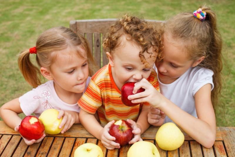 Alimentación en la etapa escolar