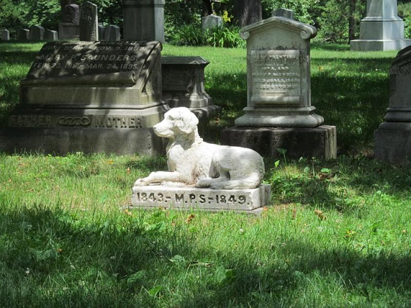 Nueva York permite enterrar a las mascotas con sus dueños