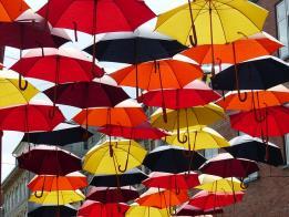 Todas las posibles coberturas de los seguros en tus coberturas
