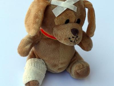 ¿Dónde van las mascotas más al veterinario?