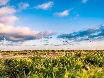 El sector asegurador comprometido con los principios de sostenibilidad